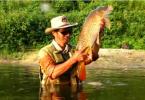 Très belle vidéo de pêche de la carpe à la mouche !