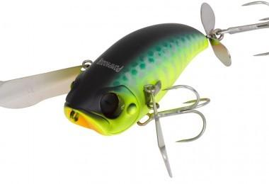 La pêche au leurre avec illex pompadour !