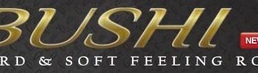 Canne Bushi de chez gunki très bon rapport qualité/prix !
