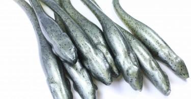 Un leurre souple pour les pêche final, l'hazedong