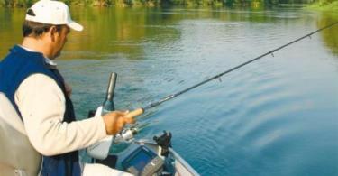 La pêche à la vertciale pour les carnassiers !