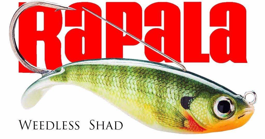 Rapala et son weedless shad, redoutable dans les milieux encombrés !