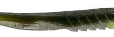 Le xlayer pour la pêche du sandre