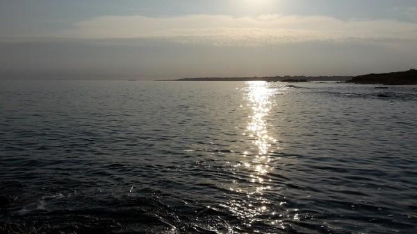pêche au leurre du bord en Bretagne