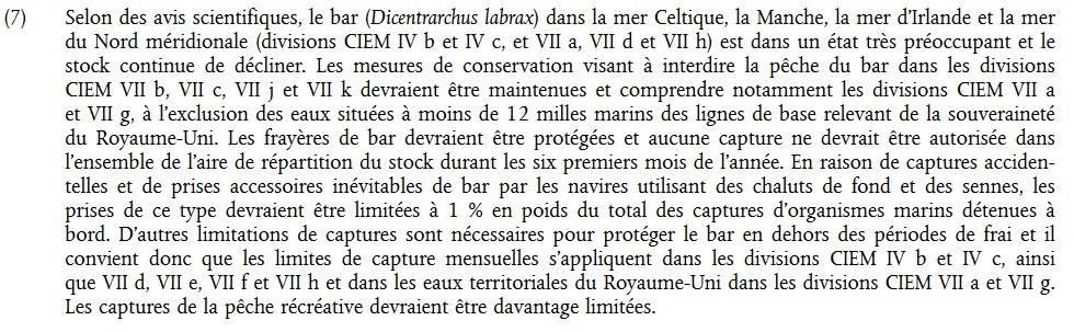 Nouvelle reglementation pour la pêche du bar en 2016