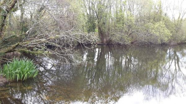 Pêche au leurre en eau dormante